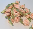 Rose pfirsich
