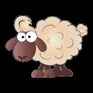 Billy das Schaf begrüßt auf Tolle-Wolle.at
